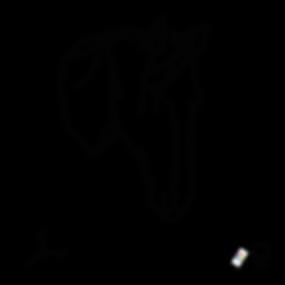 DEAR_HORSE_B.png