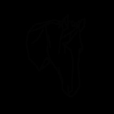 DEAR_HORSE_A.png