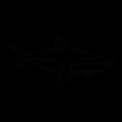 DEAR_SHARK_A