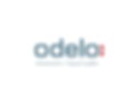 odelo-Automotive-Signal-Lights-Slovenija