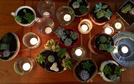 Succulent Grief Workshop