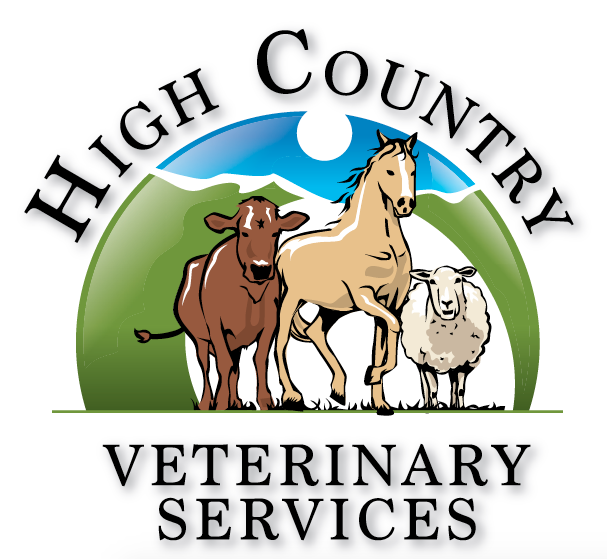 Equine hospital facility clinic steamboat springs high