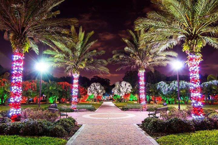 Check out Largo lights if you are in the St. Pete / Treasure Island / Clearwater area during the holidays