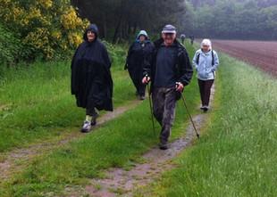 Plus de 100 marcheurs à la randonnée des asperges
