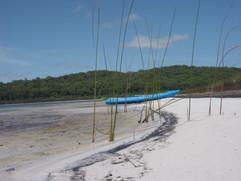 Birabeen Canoe.jpg