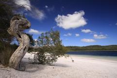 Lake Birrabeen .jpg
