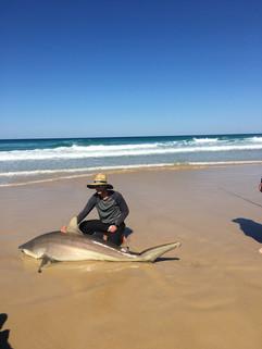 Shark hunters JPG.JPG