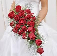 Cascata Rosas Vermelhas
