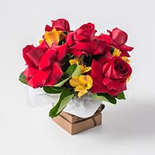 Cachepô com rosas e astromélias