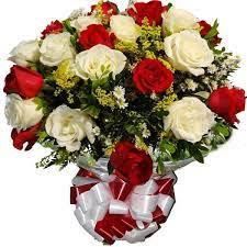 Buque Class 24 rosas vermelhas e brancas