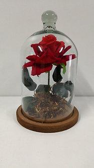Redoma Encantada com rosa vermelha Artificial