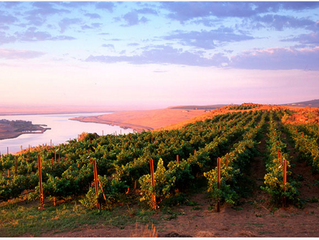 10 Undiscovered Wineries in Washington State