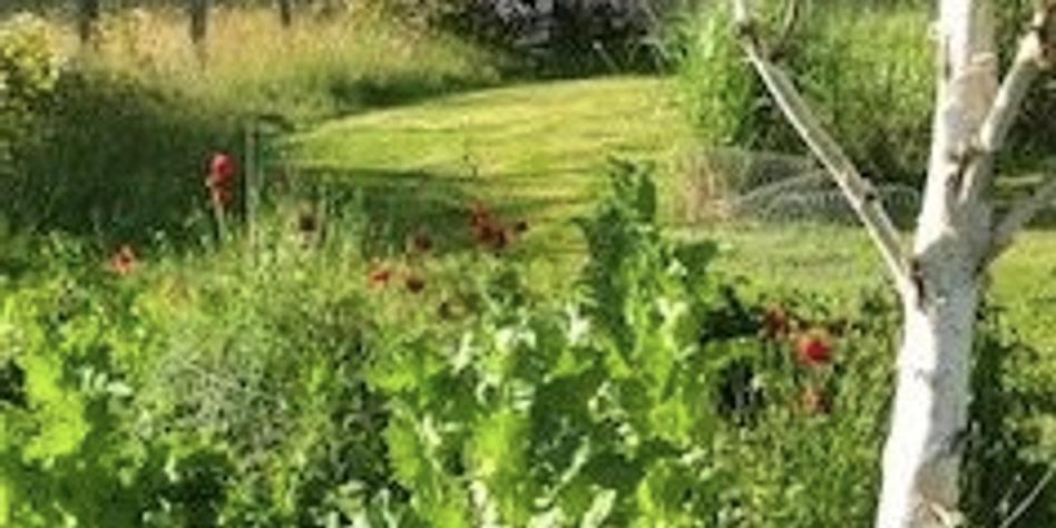 Visite de deux jardins & Pique-Nique