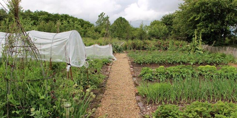 Visite du potager et jardin des Fredonnières