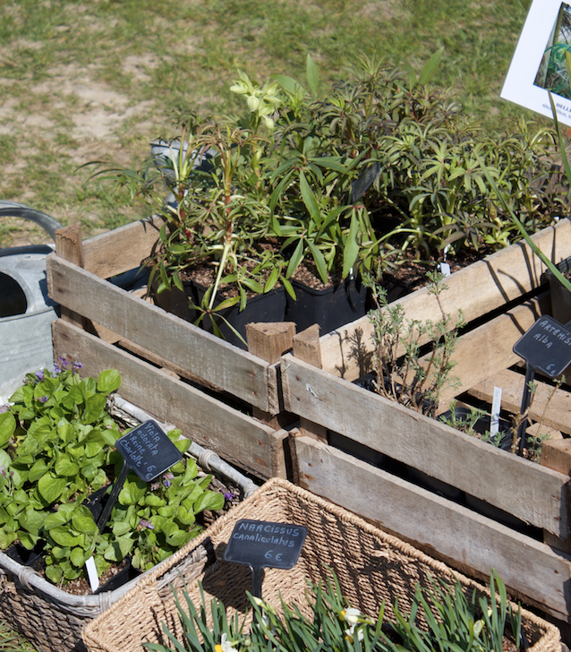 Des caisses de plantes !