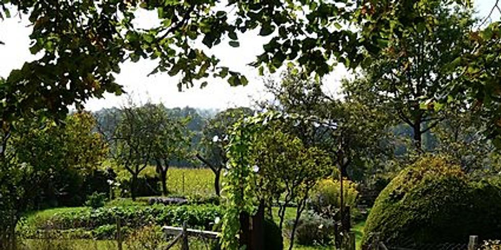 Visite du potager des Poitevinières