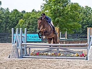 Old Field Farm Horse Show-129.jpg
