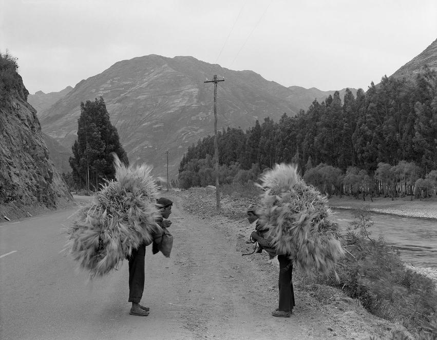 GrassCarriers,Triptych Peru Pt 2.jpg