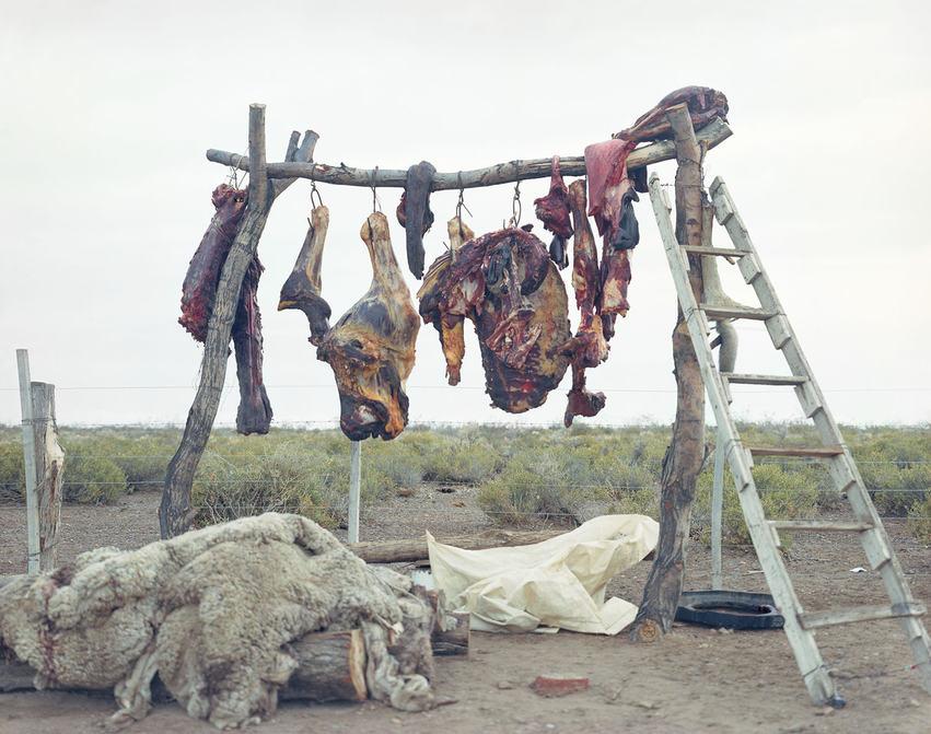 HangingMeat Patagonia.jpg