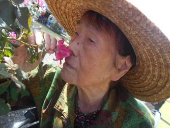 秋のバラ祭り