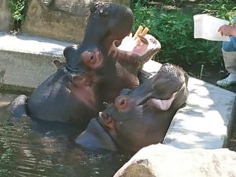 熊本動植物園