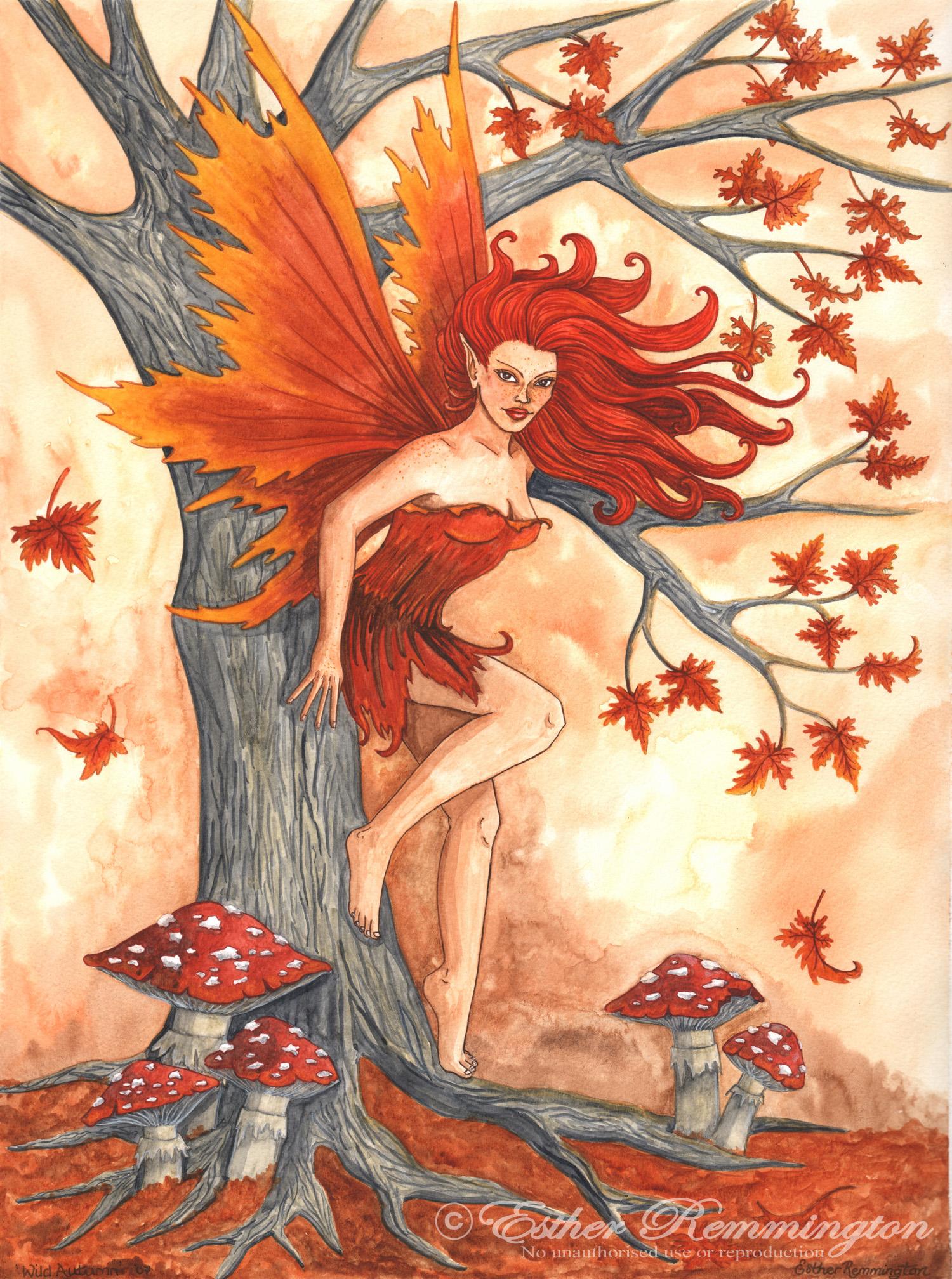 Wild Autumn - 2007