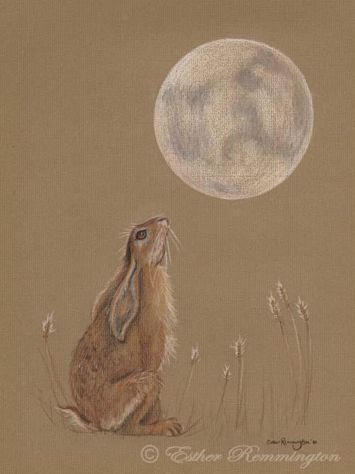 Moon Gazer - 2010