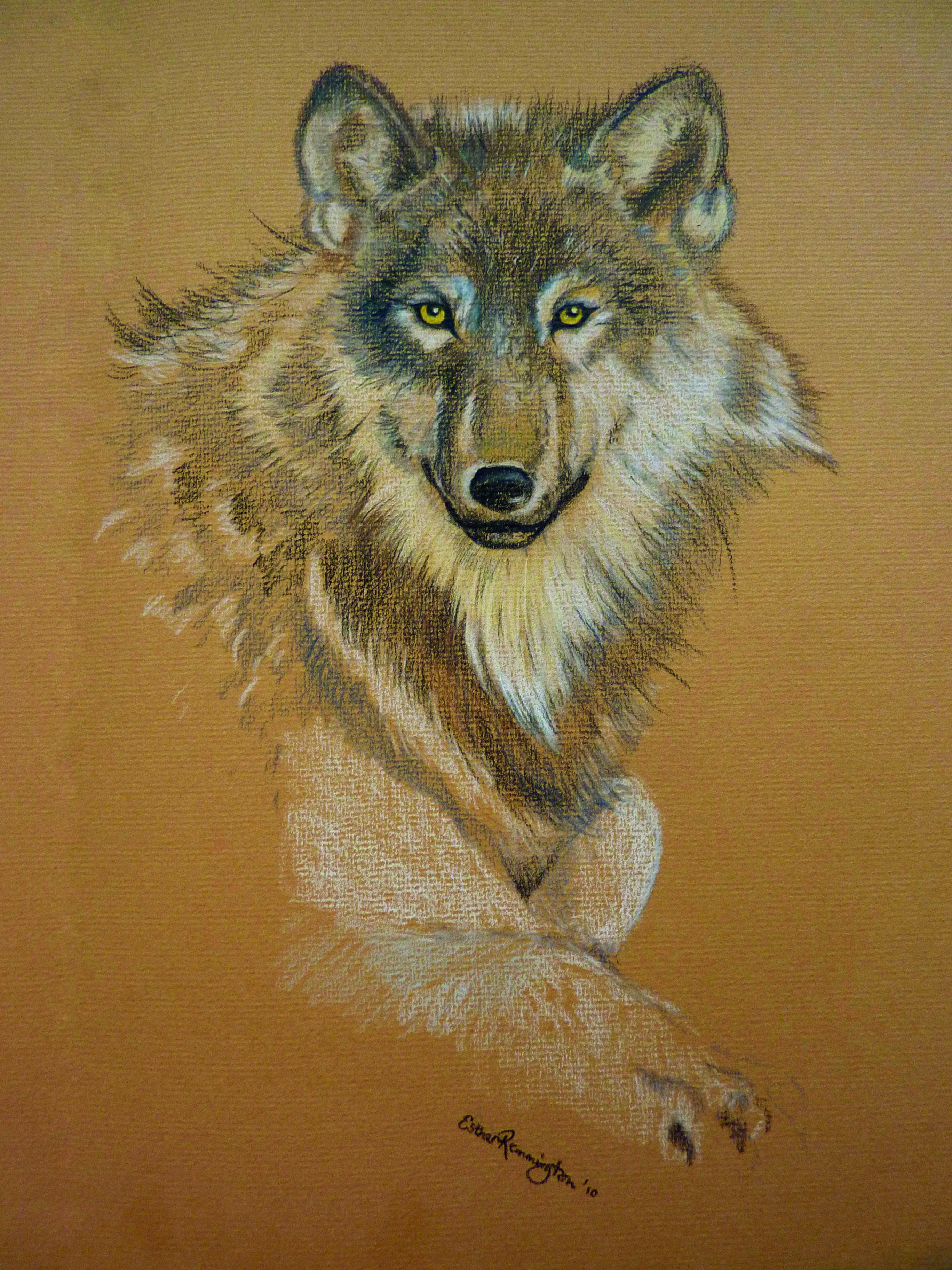 Wolf Spirit - 2010