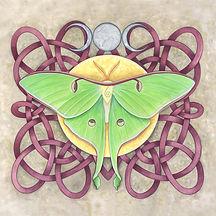 Luna Moth Moon Art