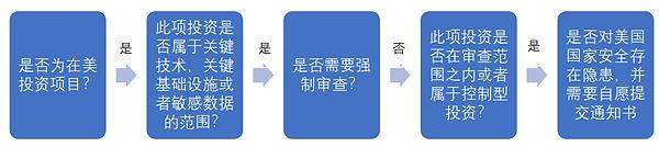 CIFIUS Process.png