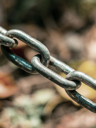 Nachhaltige und resiliente Lieferketten