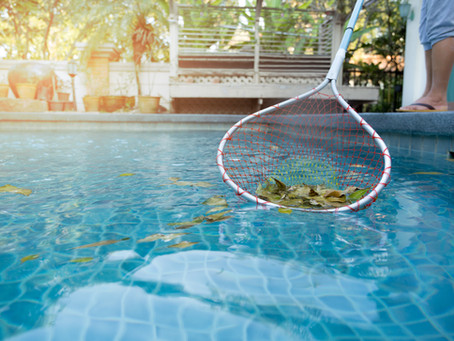 Leave the leaves to Meyer's Pool Care!