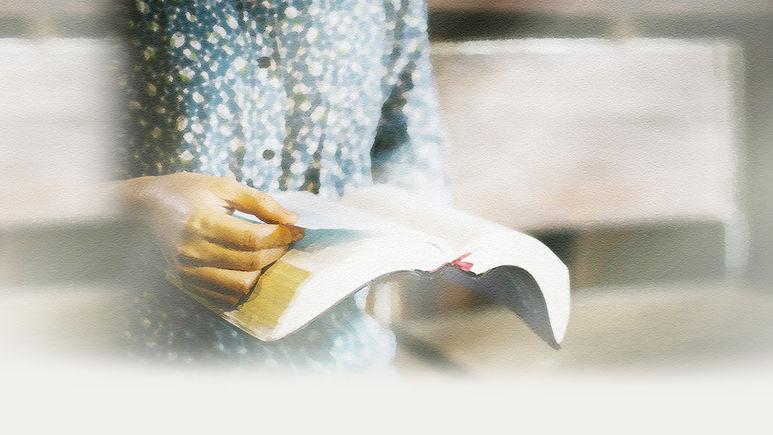 성경책02.jpg