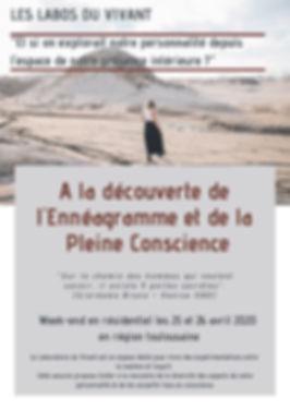 Labo_du_vivant__Ennéagramme_et_Pleine_C