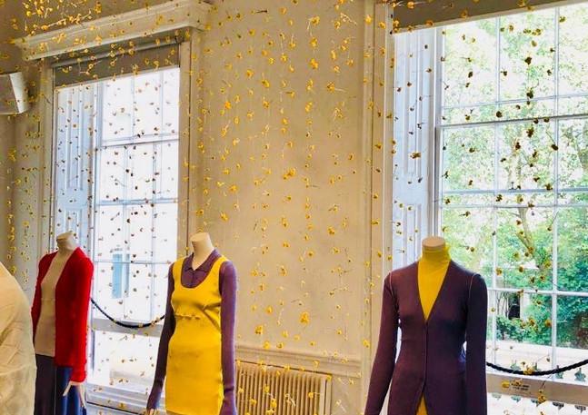 golden rod preserved flower wall