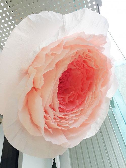 Crepe Rose 1.1m diameter