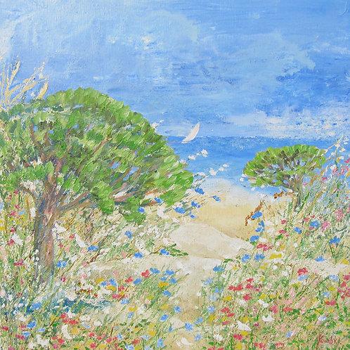 Paysages 1/les pins des Salins