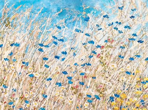 Les pieds dans le champs de lin