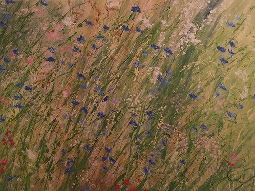Carte Nature 4