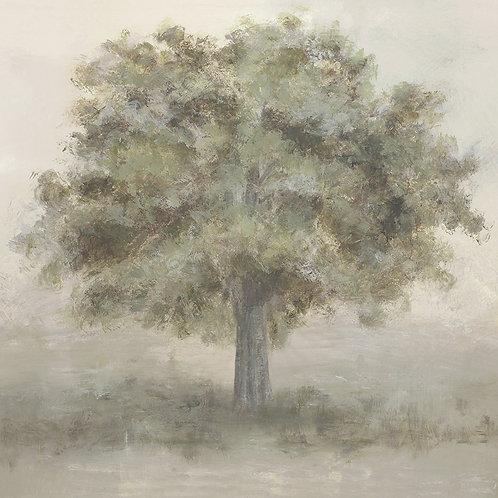 Summer Tree I
