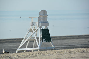 Fogp life guard chair.jpg