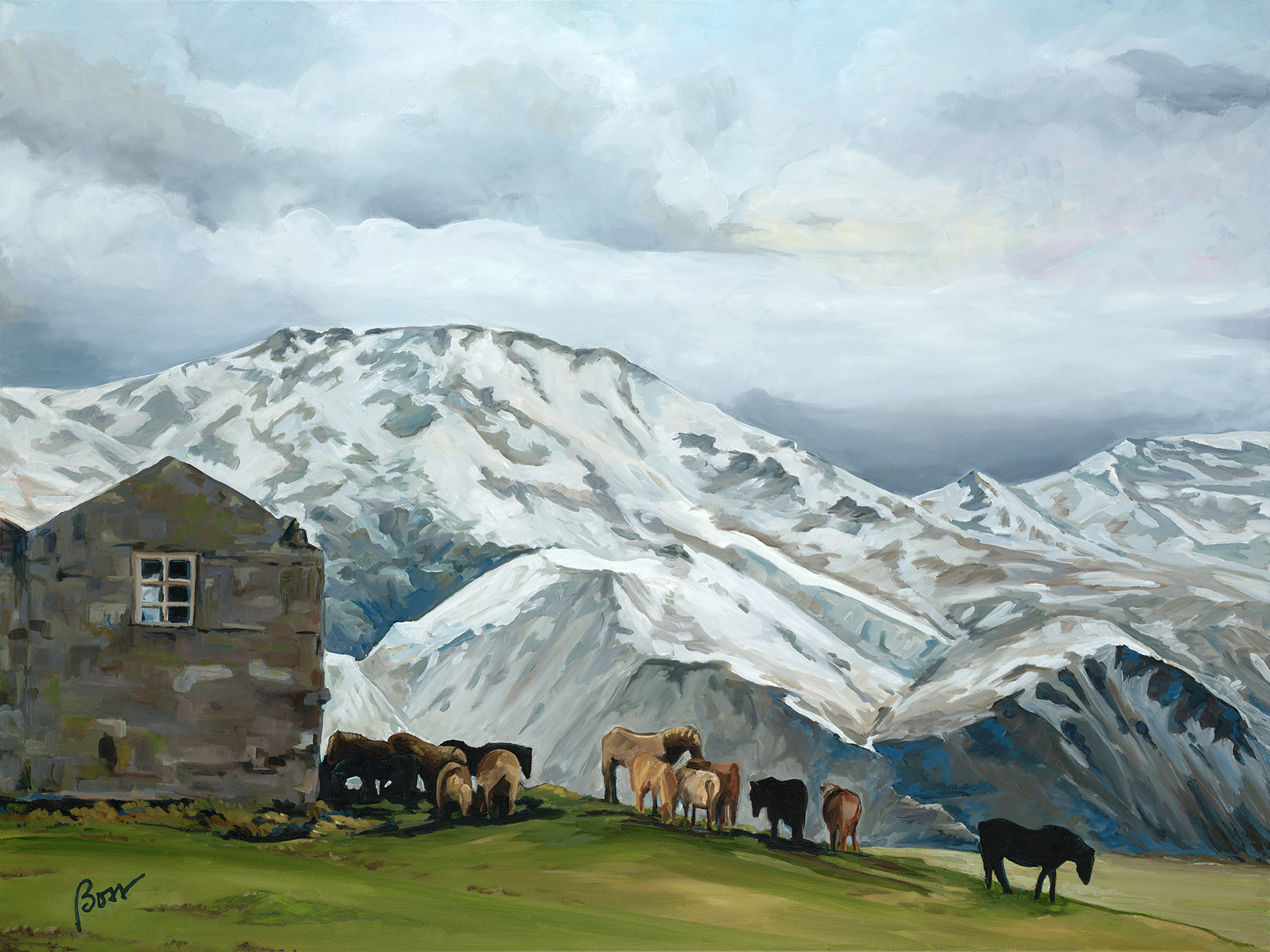 Iceland Shelter