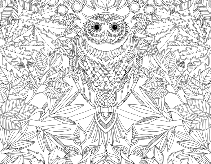 Coloring Book Pages | gebhardt