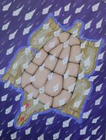 Turtles & Baby Rays