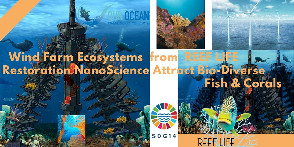 Wind Farm Ecosystems from Reef Life
