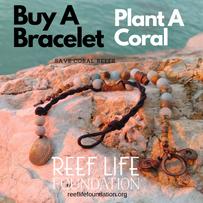Copy of Buy a bracelet Plant a coral.png
