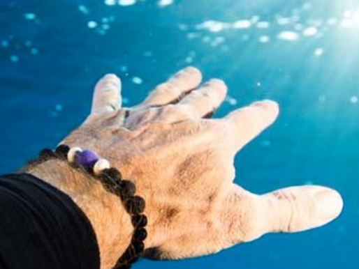Scuba Divers to Physics Profs Wear Reef Life Blue Ocean Jewelry