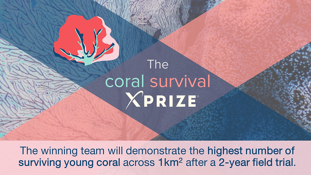 #coralsurvival #XPRIZE
