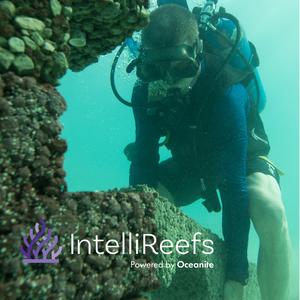 IntelliReefs Deployment with GSD Dive Gurus
