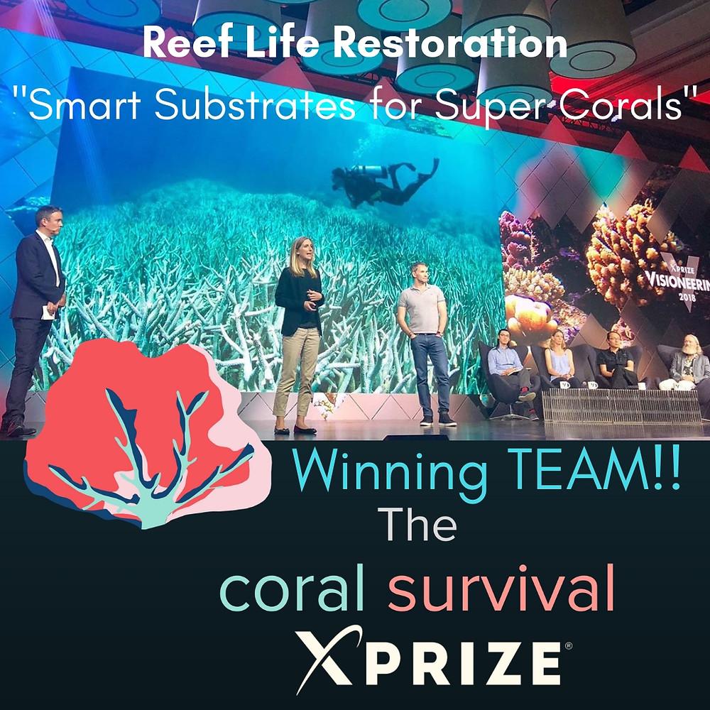 Reef Life Restoration     Plant a Million Corals